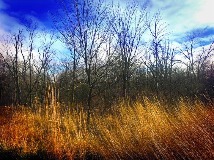 Hickory Creek Junction - December 12, 2020 - 0009